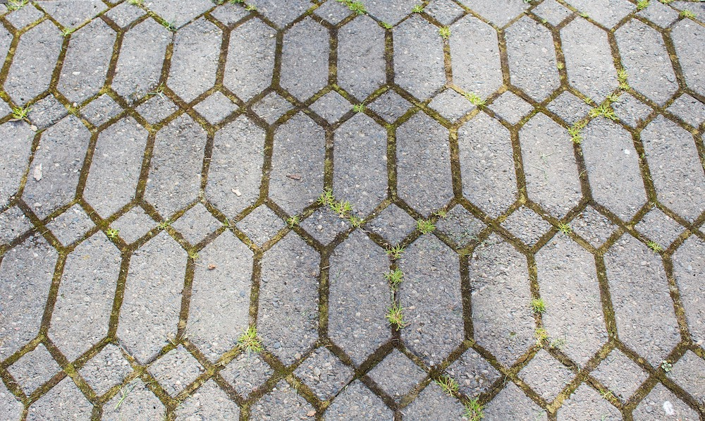 Vinegar Uses in the Garden Walkway with Grass and Weeds #VinegarUses #Gardening #AllNaturalCleaning #SaveMoney #SaveTime #BudgetFriendly #NonToxic #EnvironmentallyFriendly #PatioCleaning #VinegarCleaning