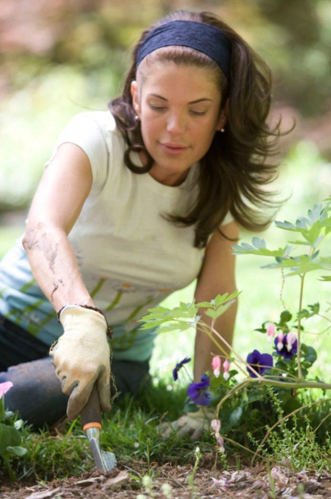Garden Centers Hiring #MakeMoney #TemporaryWork #SeasonalWork #JobOpportunities #PartTimeWork