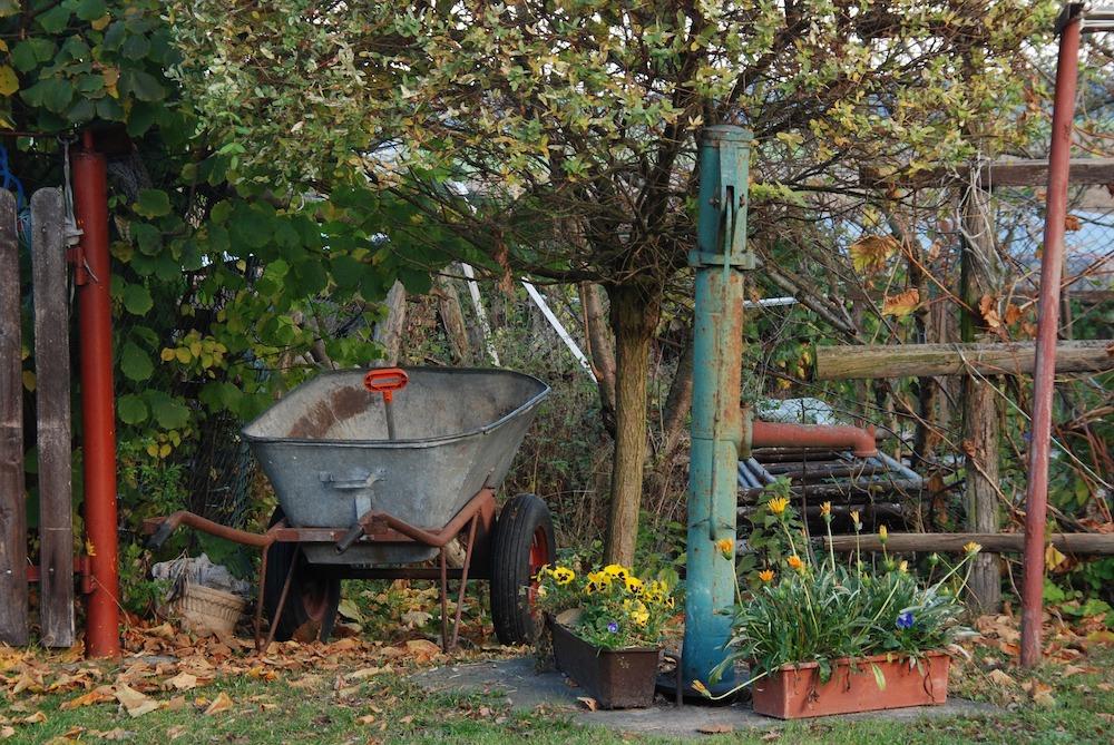 Spring Garden Cleaning Tips Garden Spring Clean up #SpringGarden #Gardening #SpringCleaning #SprngGardenCleaning #SpringChores #BenefitsofGardening #GardenWorkOut