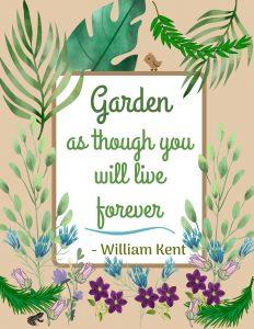 Gardening 2020 p4