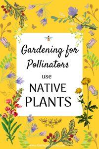 Gardening for Pollinators use NATIVE PLANTS #Native #NativePlants #NativeGardening #AttractBirds #PlantsForBirds #PlantsForWildlife #BeneficialForPollinators #GardeningForPollinators