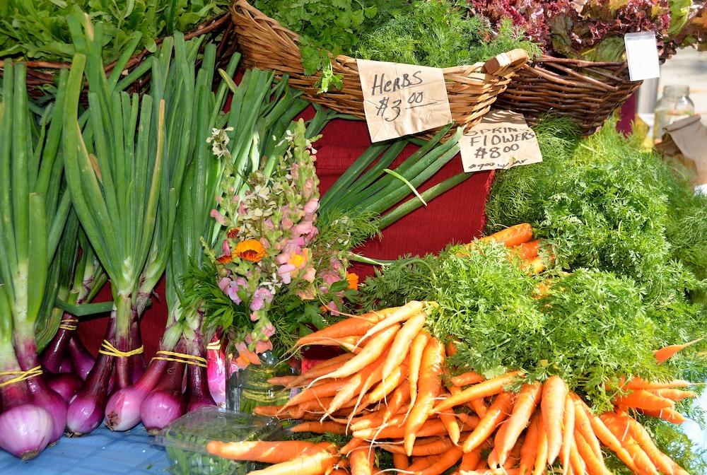 Money Saving Ideas Herbs and Vegetables #Frugal #FrugalLiving #FrugalLife #SaveMoney #MoneySaving #Saver #MoneySavingTips #Thrifty #FamilyBudget #LiveFrugally #DIY