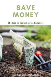SAVE MONEY 14 Ideas to Reduce Home Expenses #Frugal #FrugalLiving #FrugalLife #SaveMoney #MoneySaving #Saver #MoneySavingTips #Thrifty #FamilyBudget #LiveFrugally #DIY