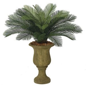 Artificial Cycas Palm Cluster #Pool #SummerPool #PoolFun #PoolDecor #PoolAccessories #SummerFun #Relax #DailySwim #PoolParty