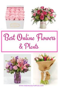 Best Online Flowers and Plants #flowers #flowerdelivery #bouquets #OnlineFlowers #FlowersOnline #MothersDay #FlowersForMom #GiveMomFlowers