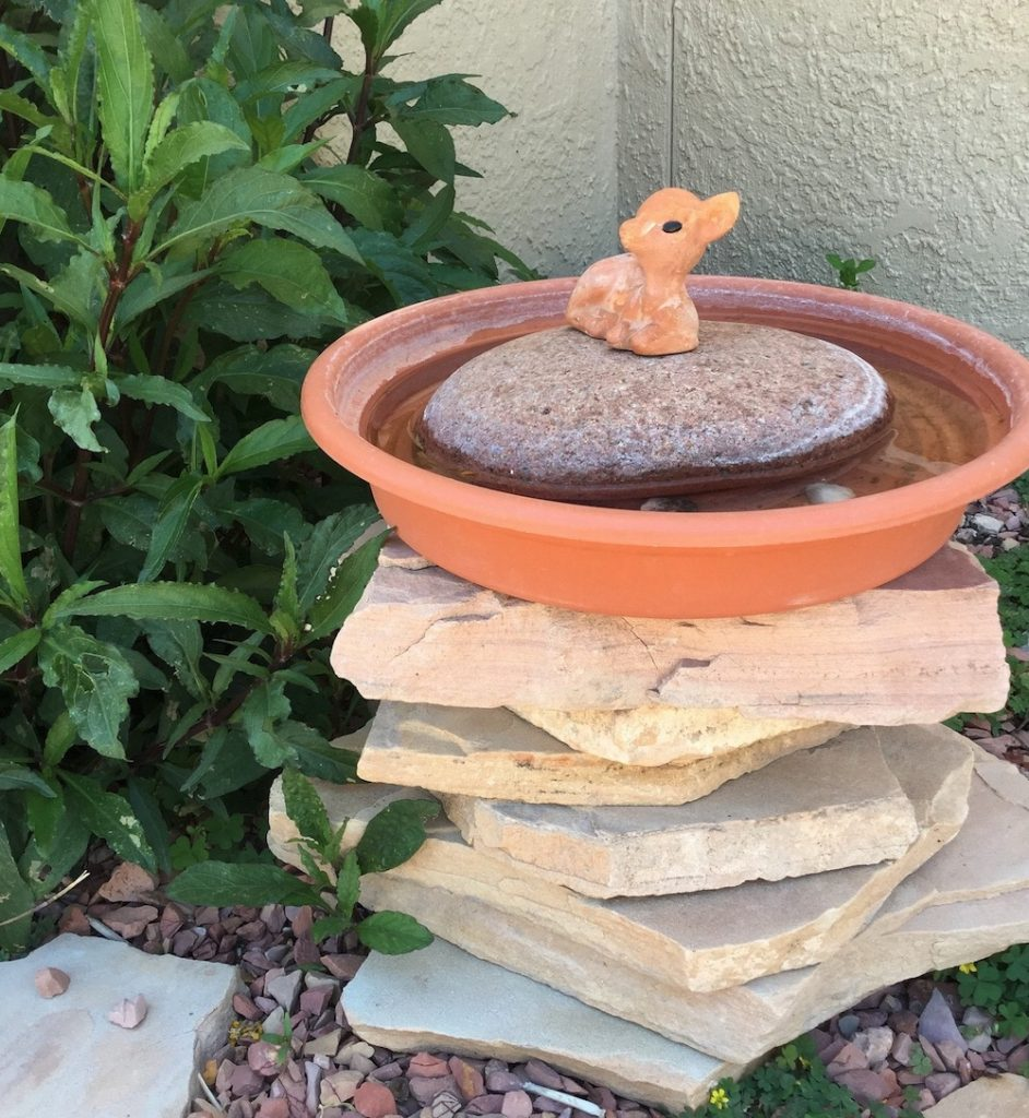 How to Provide a Reliable Water Source for Birds DIY Birdbath Using a Plant Saucer with Large Stone #Wildlife #NativePlants #Gardening #AttractBirds #WaterSourceForBirds #WaterForWildlife #BeneficialForPollinators #GardeningForPollinators