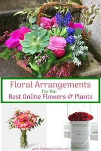 Floral Arrangements Best Online Flowers and Plants #flowers #flowerdelivery #bouquets #OnlineFlowers #FlowersOnline #MothersDay #FlowersForMom #GiveMomFlowers