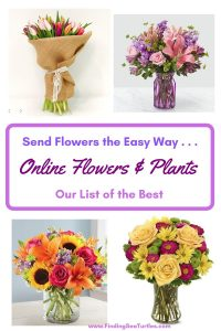 Send Flowers the Easy Way Online Flowers and Plants #flowers #flowerdelivery #bouquets #OnlineFlowers #FlowersOnline #MothersDay #FlowersForMom #GiveMomFlowers