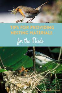 Tips for Providing Nesting Materials for the Birds #Wildlife #NativePlants #Gardening #Birds #AttractBirds #NestingMaterials #NestBuilding #BeneficialForPollinators #GardeningForPollinators