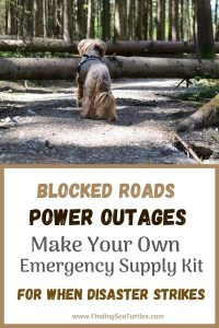 Blocked Roads Power Outages Make Your Own Emergency Supply KitWhen disaster strikes #Emergency #EmergencySupplies #EmergencySupplyKit #FEMA