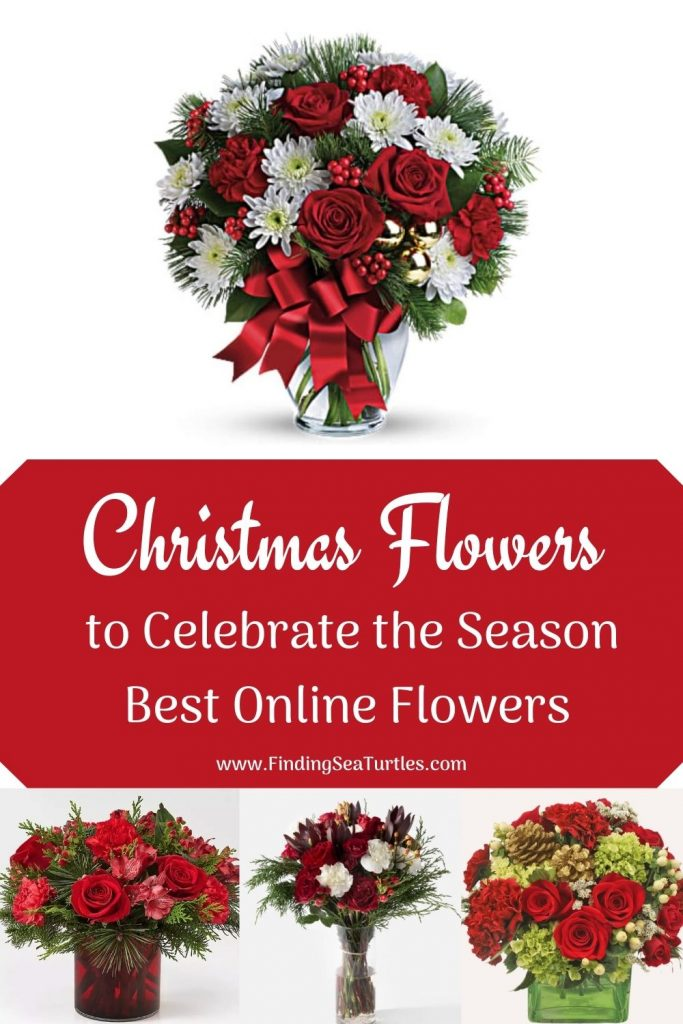 Christmas Flowers to Celebrate the Season Best Online Flowers #FreshFlowers #FlowerDelivery #bouquets #OnlineFlowers #FlowersOnline #Christmas #ChristmasFlowers #FestiveFlowers