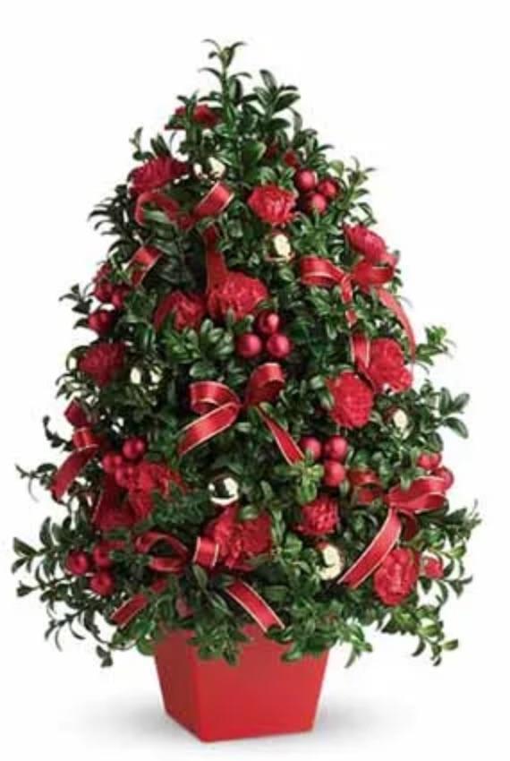 The Spirit of Christmas Deck the Halls Tree by Send Flowers #FreshMiniTree #MiniChristmasTree #TabletopChristmasTree #OnlineFlowers #ChristmasTrees #ChristmasTabletopTree