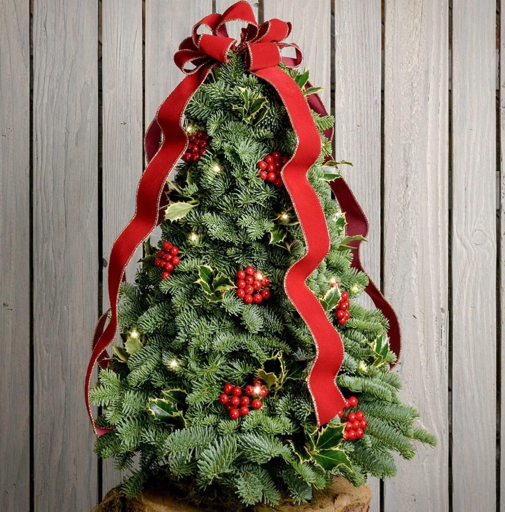 Fresh Tabletop Christmas Trees Deck the Holly by Lynch Creek Farm #FreshMiniTree #MiniChristmasTree #TabletopChristmasTree #OnlineFlowers #ChristmasTrees #ChristmasTabletopTree