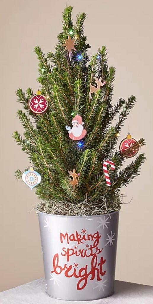 Vintage Style Merry & Bright Tiny Tree by FTD #FreshMiniTree #MiniChristmasTree #TabletopChristmasTree #OnlineFlowers #ChristmasTrees #ChristmasTabletopTree