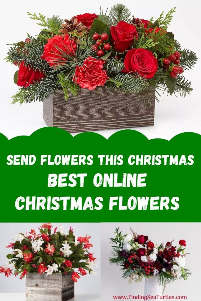 Send Flowers This Christmas Best Online Christmas Flowers #FreshFlowers #FlowerDelivery #bouquets #OnlineFlowers #FlowersOnline #Christmas #ChristmasFlowers #FestiveFlowers