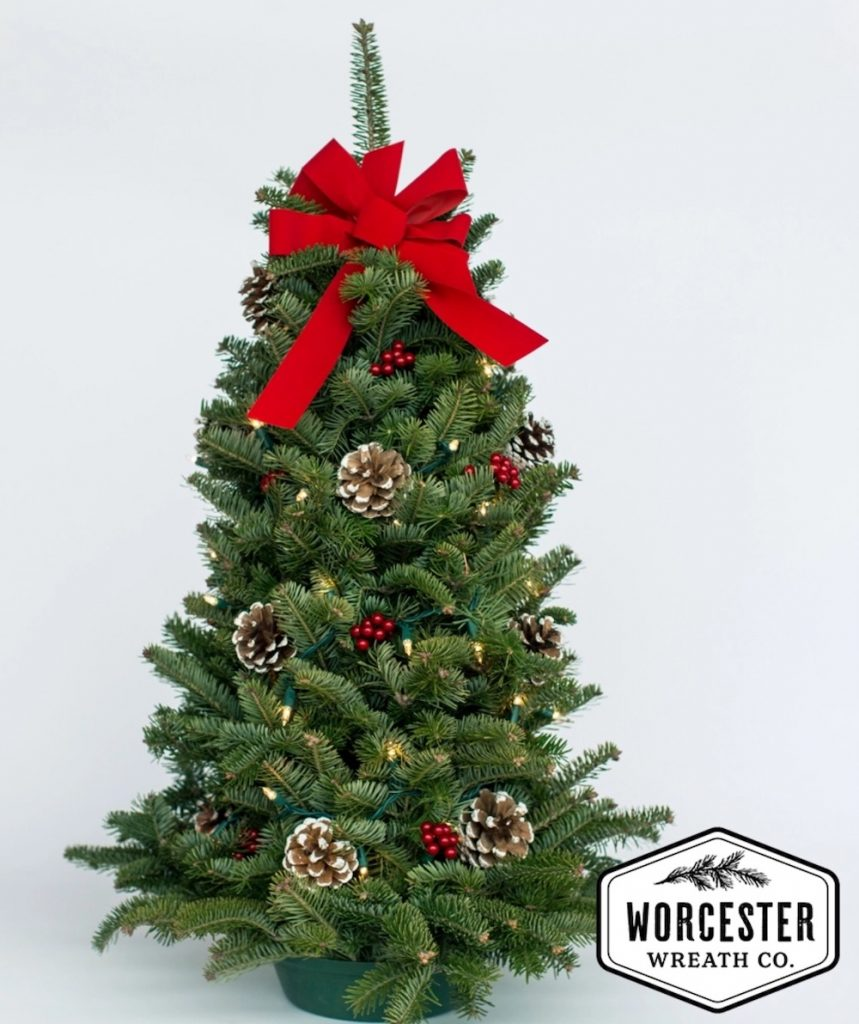Simple Farmhouse Decor Twinkle Tabletop Christmas Tree by Worcester Wreath Company #FreshMiniTree #MiniChristmasTree #TabletopChristmasTree #OnlineFlowers #ChristmasTrees #ChristmasTabletopTree