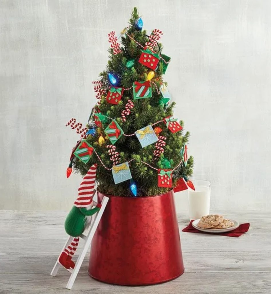 Holiday Decor Whimsical Christmas Tree by Harry and David #FreshMiniTree #MiniChristmasTree #TabletopChristmasTree #OnlineFlowers #ChristmasTrees #ChristmasTabletopTree