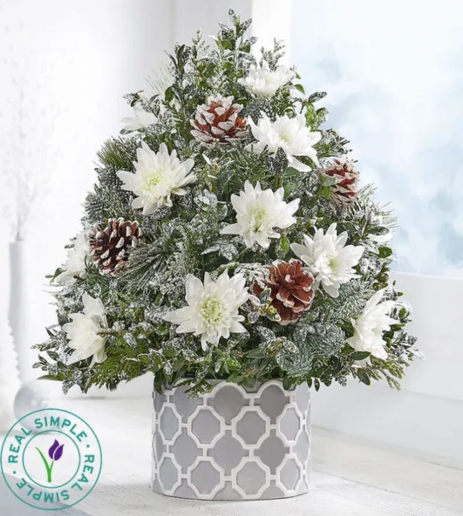 Fresh Tabletop Christmas Trees Winter's Snowfall Holiday Flower Tree by Real Simple by 1800Flowers #FreshMiniTree #MiniChristmasTree #TabletopChristmasTree #OnlineFlowers #ChristmasTrees #ChristmasTabletopTree