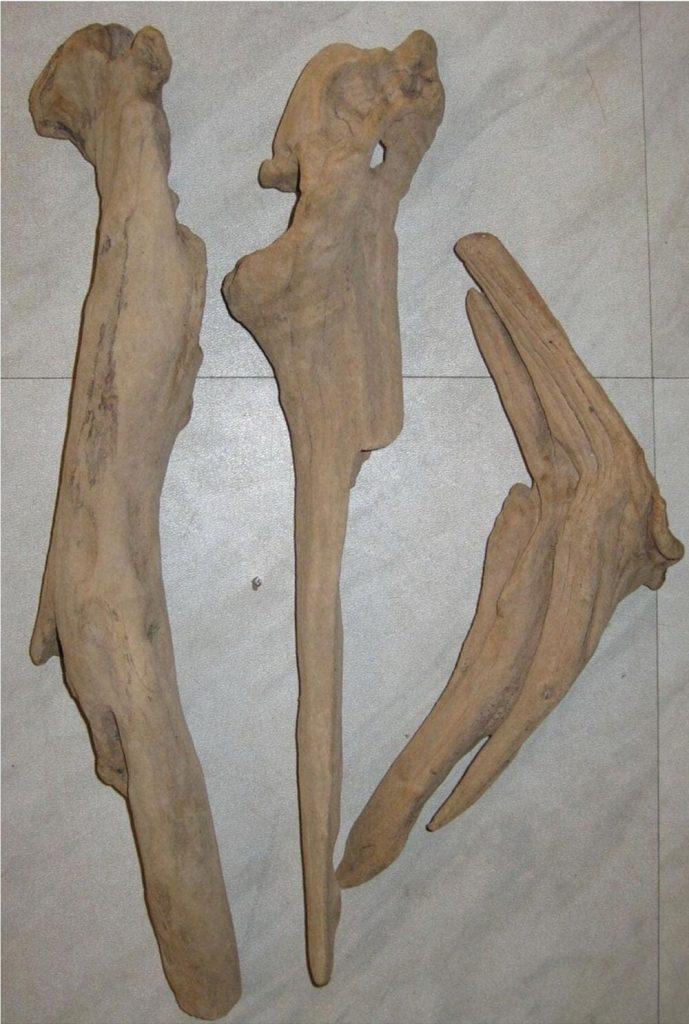 Seaside Style Driftwood Driftwood Branch #Driftwood #DriftwoodDecor #BeachHome #CoastalDecor #IslandDecor #SeasideDecor #TropicalIslandDecor #BeachHomeDecor