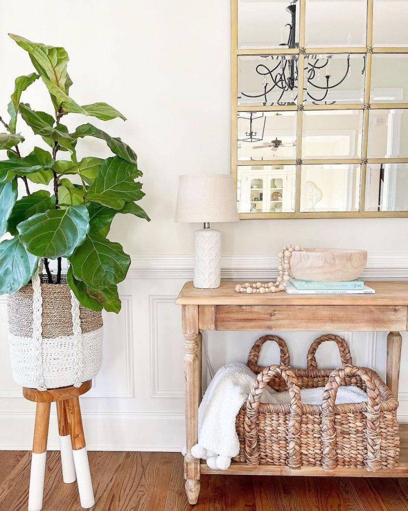 Grow a Fiddle Leaf Fig Tree #Coastal #CoastalDecor #Entryway #Foyer #CoastalEntryway #CoastalFoyer #BeachHouse #BeachHome #SummerHouse #LakeHouse #ConsoleTable #SeasideDecor #IslandDecor #TropicalIslandDecor