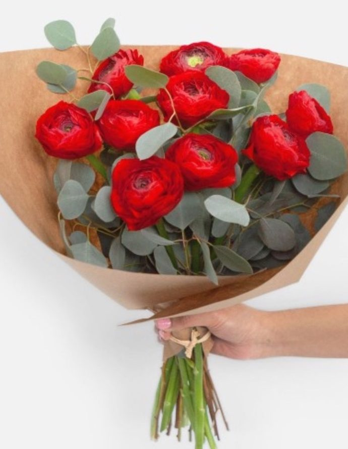 Best Valentine's Flowers and Plants