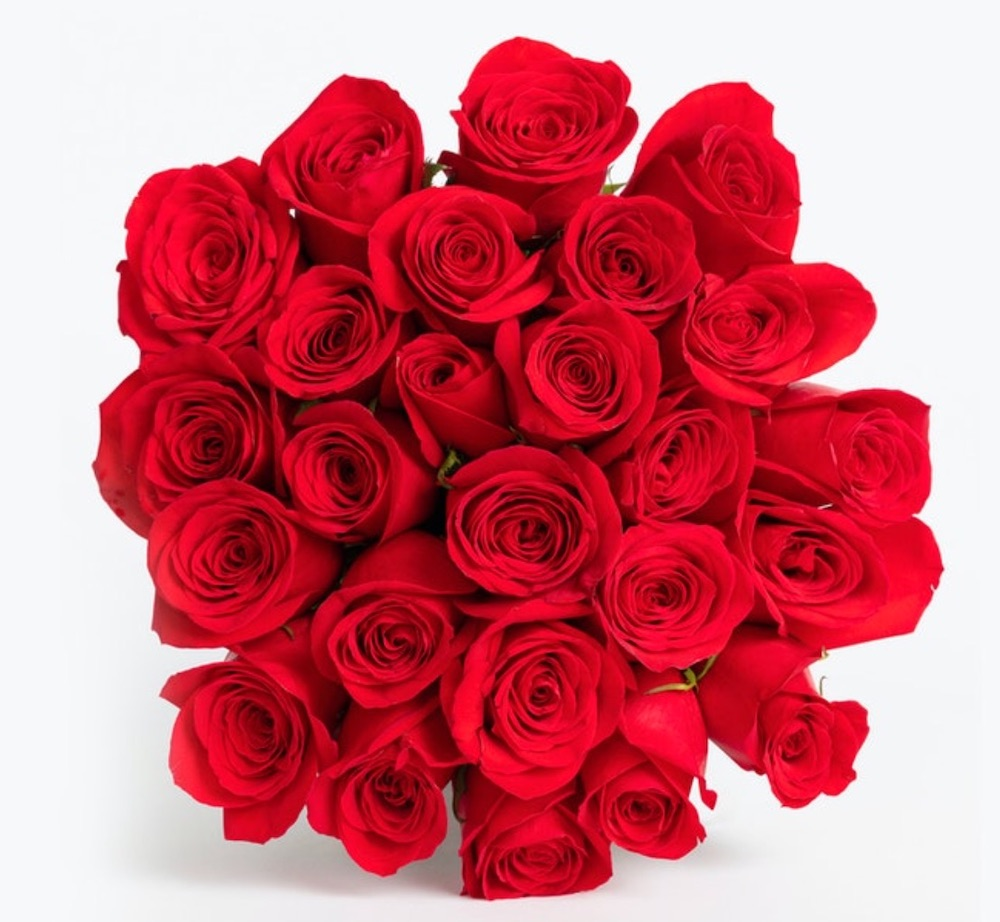 Celebrate the Season of Love Perfect Red Rose by Bloomsybox #flowers #FlowerDelivery #bouquets #OnlineFlowers #FlowersOnline #ValentinesDay #ValentinesFlowers #SendFlowers
