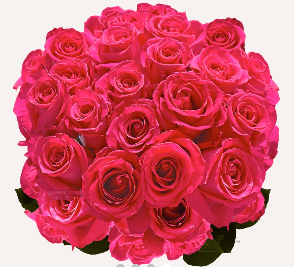 Love is in the Air Valentine's Day Hot Pink Roses Hot Pink by Global Rose #flowers #FlowerDelivery #bouquets #OnlineFlowers #FlowersOnline #ValentinesDay #ValentinesFlowers #SendFlowers