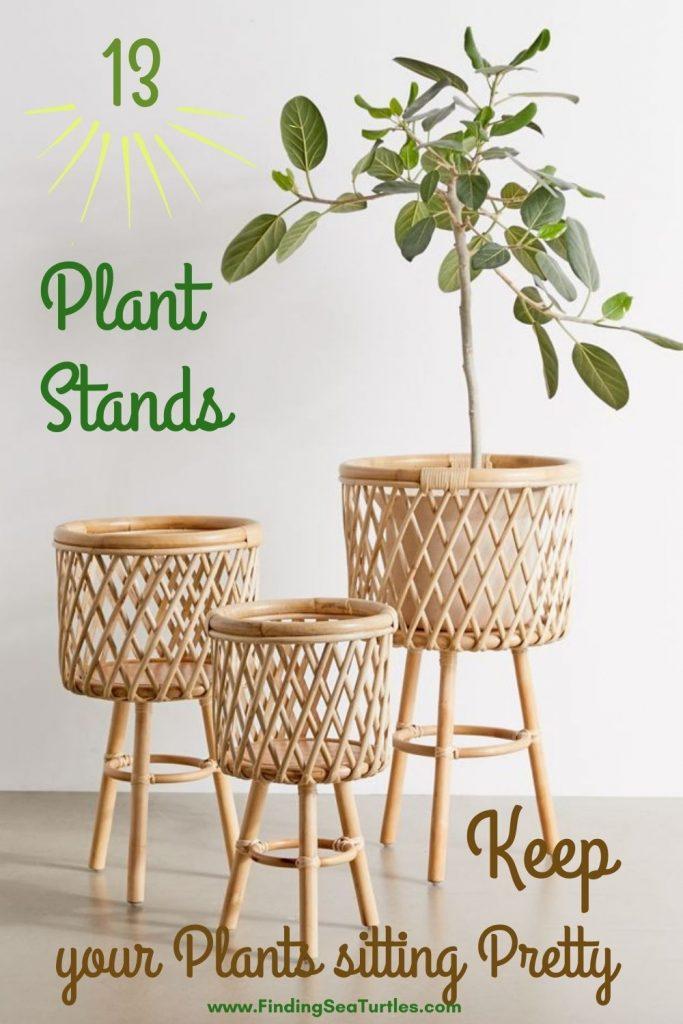 13 Plant Stands Keep Your Plants Sitting Pretty #Coastal #Boho #PlantStands #RattanPlantStands #CoastalPlantStands #CoastalDecor #CoastalHome #CoastalLiving #BeachHouse #LakeHouse #SummerHouse #BohoDecor