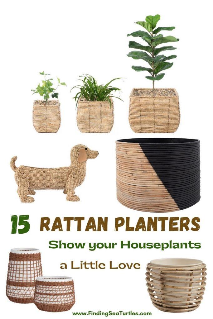 15 Rattan Planters Show Your Houseplants a Little Love #Coastal #Boho #Planters #PotPlanters #RattanPotPlanters #CoastalDecor #CoastalHome #CoastalLiving #GoGreen #GreenLiving #Sustainable #EcoFriendly #BohoDecor