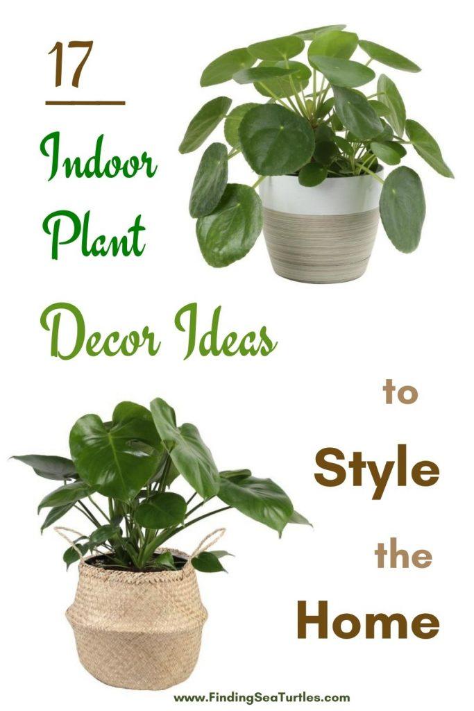 17 Indoor Plant Decor Ideas to Style the Home #Coastal #HousePlants #IndoorPlants #AirPurifyingPlants #GoGreen #GreenLiving #CoastalDecor #CoastalHome #CoastalLiving #InteriorTips #InteriorTipsAndTricks #GreenLovers #InteriorDesignTips #HomeDecorTipsAndTricks #HomeDecor