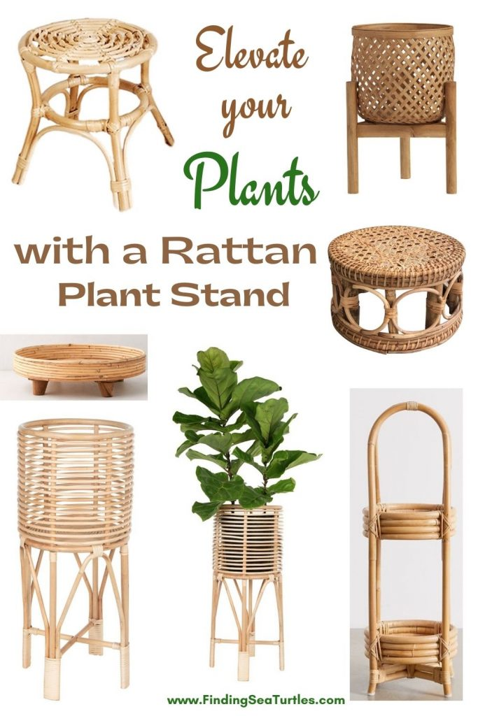 Elevate your Plants with a Rattan Plant Stand #Coastal #Boho #PlantStands #RattanPlantStands #CoastalPlantStands #CoastalDecor #CoastalHome #CoastalLiving #BeachHouse #LakeHouse #SummerHouse #BohoDecor