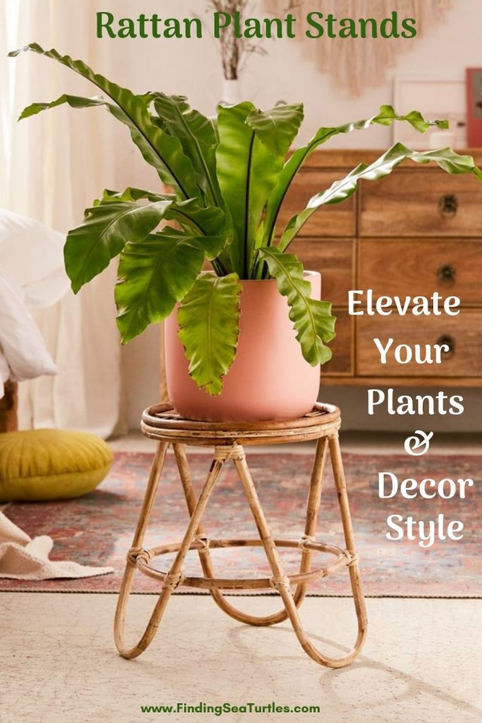 Rattan Plant Stands that Elevate Your Plants Decor Style #Coastal #Boho #PlantStands #RattanPlantStands #CoastalPlantStands #CoastalDecor #CoastalHome #CoastalLiving #BeachHouse #LakeHouse #SummerHouse #BohoDecor