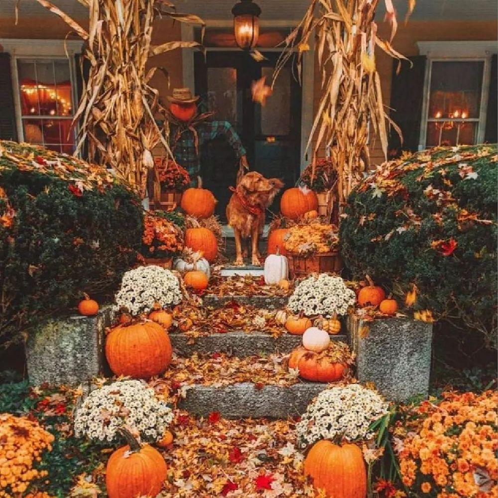 In 14 #Fall #Porch #FallPorch #FallDecor #HomeDecor #AutumnDecor