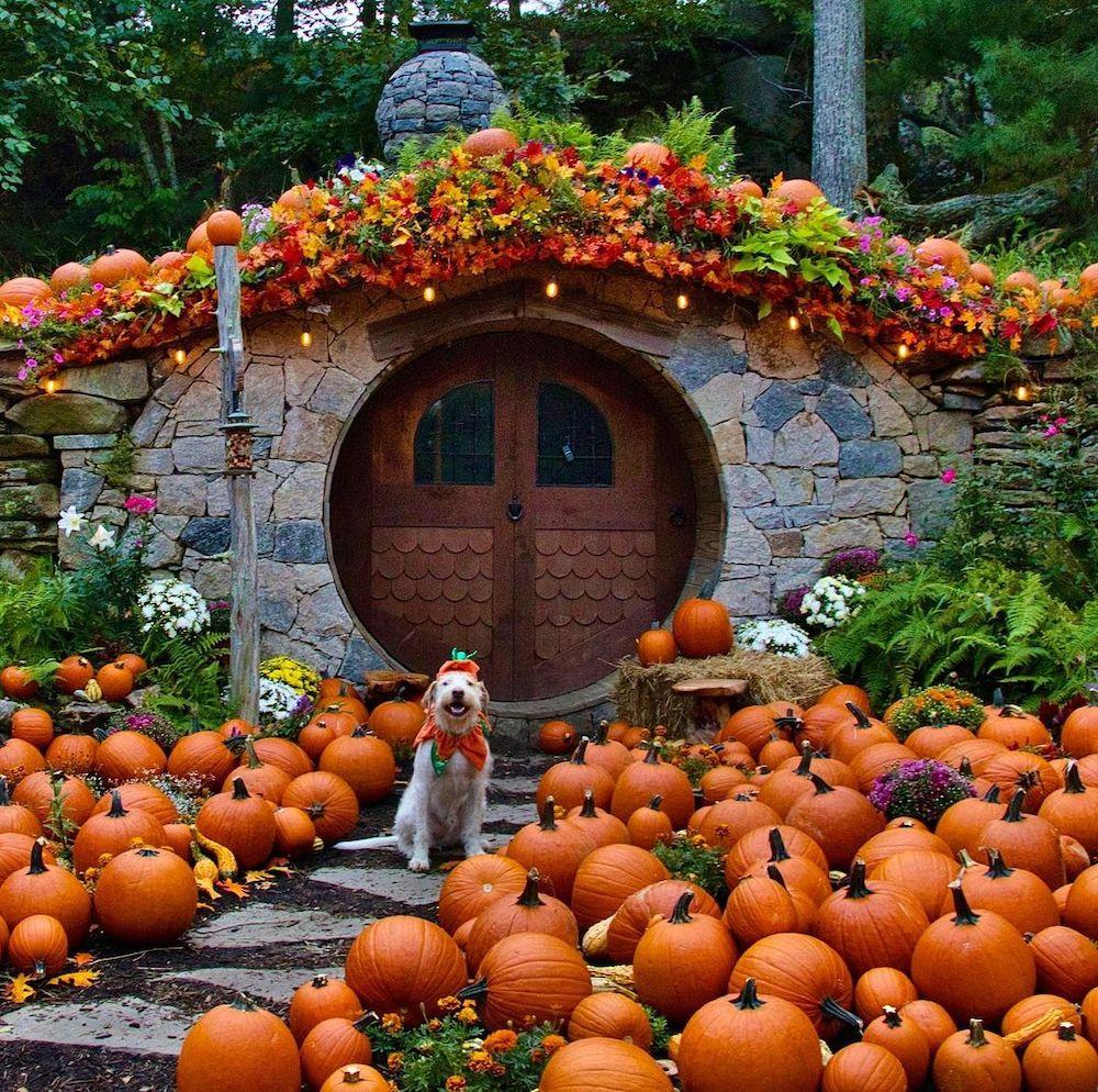 Fall Porch Styling Ideas In 23 #Fall #Porch #FallPorch #FallDecor #HomeDecor #AutumnDecor
