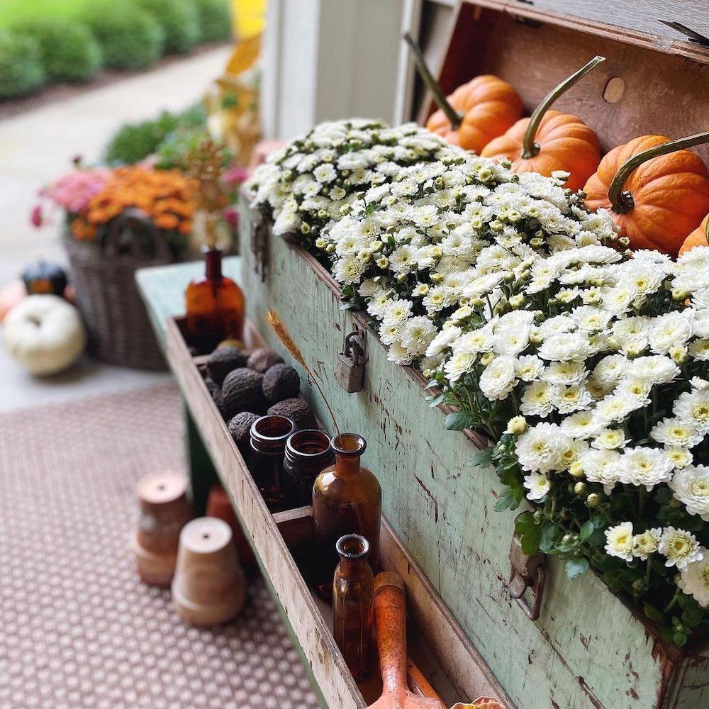 In 33 1 #Fall #Porch #FallPorch #FallDecor #HomeDecor #AutumnDecor