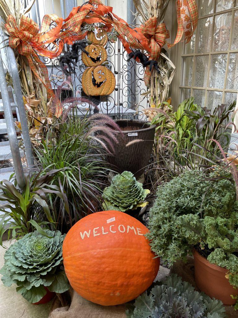 Welcome Pumpkins and Ornamental Cabbages_1607 #Fall #Porch #FallPorch #FallDecor #HomeDecor #AutumnDecor